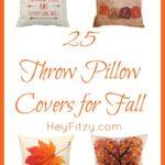 25 Throw Pillows for Your Fall Decor